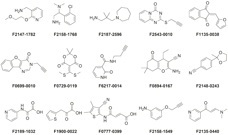 Representative fragments with potential covalent inhibition activity