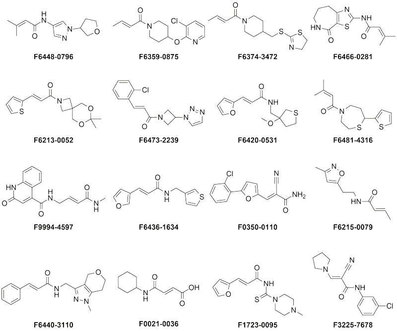 Representative compounds from Specific Covalent Fragment Library