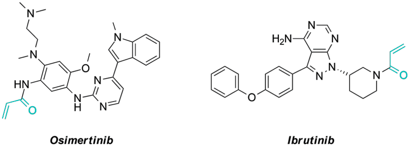 Examples of approved drugs capable to inhibit protein kinases irreversibly
