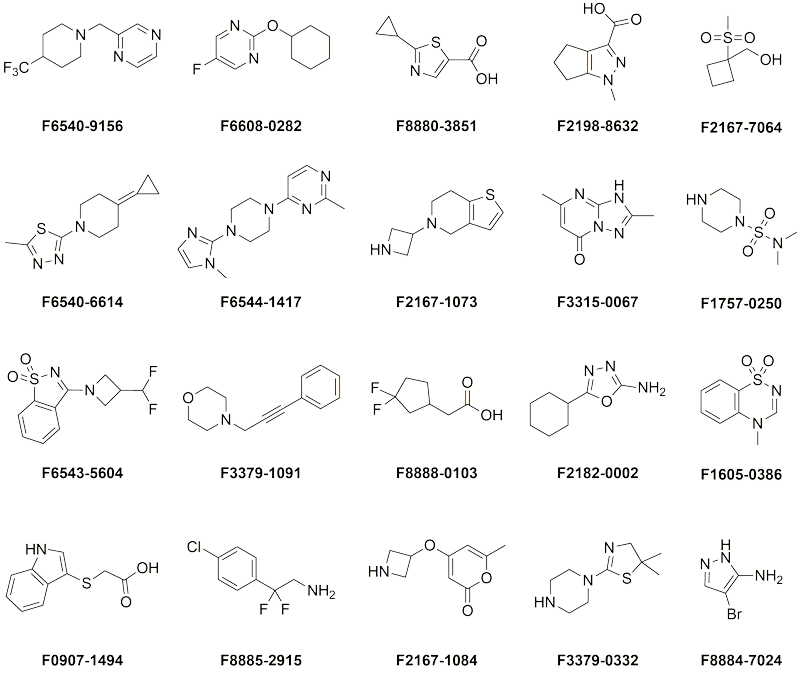 Ultimate Fragment Library  representative compounds