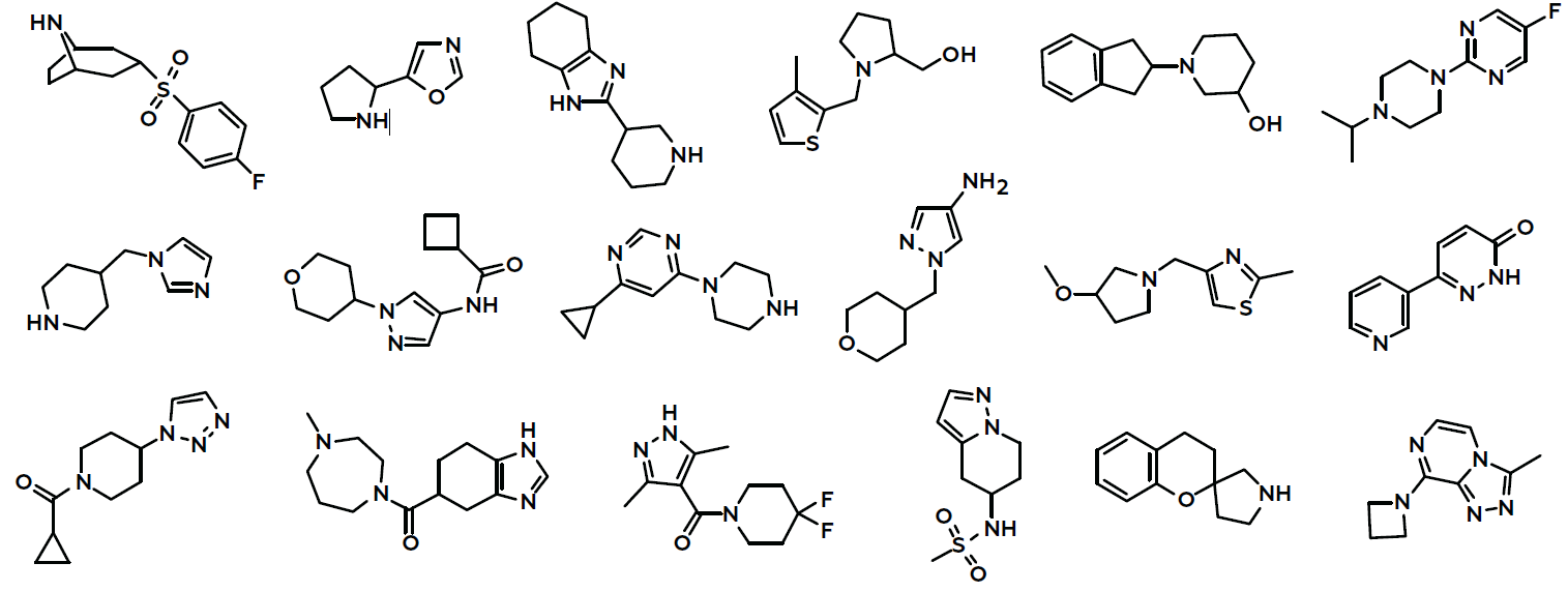 Fragment Libraries | FBDD screening compounds | Life Chemicals